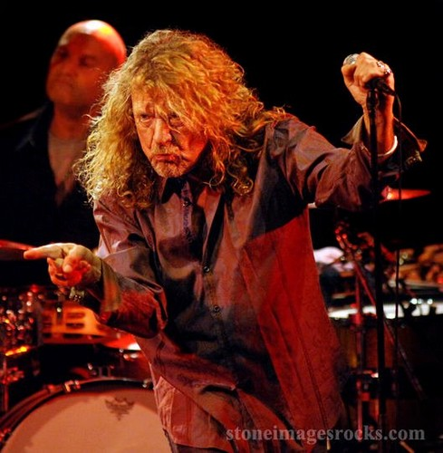 Led Zeppelin wallpaper with a drummer, a snare drum, and a tenor drum entitled Led Zepplin/Robert Plant