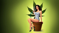 Mary-Louise Parker - mary-louise-parker wallpaper