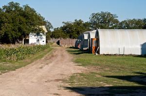 Montesino Farms