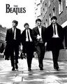 More Beatles shtuff - the-beatles photo