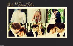 Mr&Mrs.Edward Cullen