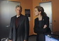 "NCIS// 11X02 ""Past, Present & Future"" Promotional Images - ncis photo"