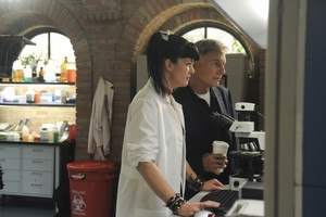 "NCIS// 11X02 ""Past, Present & Future"" Promotional larawan"