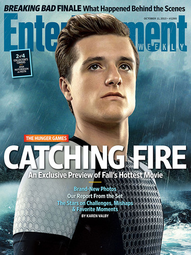 Catching Fire wallpaper possibly containing a portrait and anime titled Nw CF poster