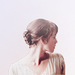 Pride & Prejudice Icons - pride-and-prejudice icon