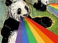 Rainbow Barfing Pandas! - pandas photo