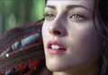 Snow White - snow-white-and-the-huntsman photo