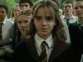 So cute - hermione-granger photo