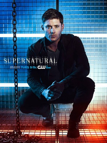 Jared padalecki and jensen ackles images supernatural season 9 hd jared padalecki and jensen ackles wallpaper probably with a chainlink fence titled supernatural season 9 voltagebd Gallery
