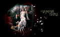the-vampire-diaries-tv-show - TVD wallpaper