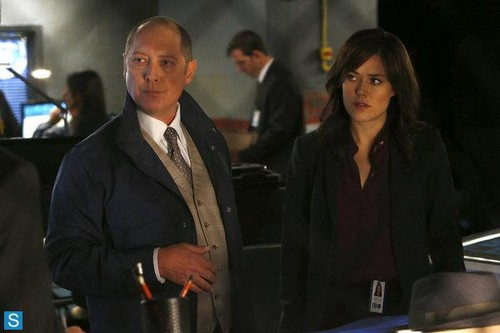 The Blacklist wallpaper containing a business suit entitled The Blacklist - Episode 1.03 - No. 84: Wujing