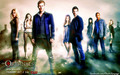 The Originals → Season 1 Photoshoot