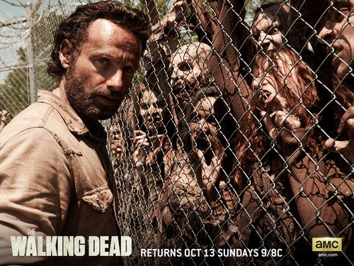 The Walking Dead wallpaper containing a chainlink fence called Rick Grimes