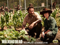 Rick & Carl Grimes - the-walking-dead wallpaper