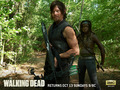Daryl Dixon & Michonne - the-walking-dead wallpaper