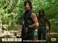 Daryl Dixon & Michonne