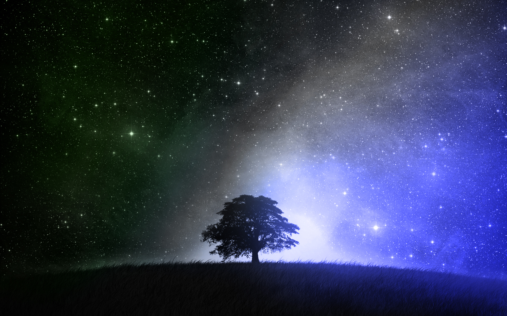 Tree and the Stars at Night time~
