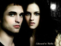 Twilight-Breaking dawn 2 - the-twilight-saga-vampires-wolves photo