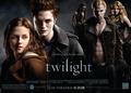 Twilight Saga Vampires