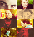 Twilight Saga ♚ - twilight-series fan art