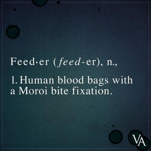 VA still - feeder