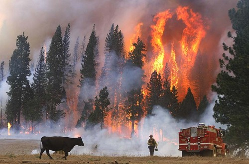 美利坚合众国 壁纸 titled Yosemite Fires