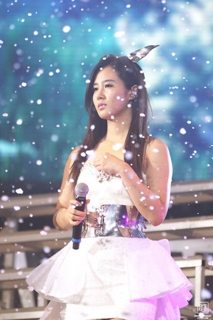 Yuri 음악회, 콘서트