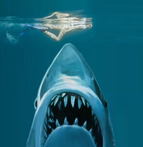 Miranda Cosgrove wallpaper entitled miranda jaws