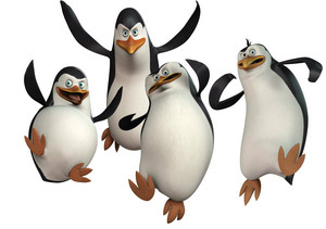pinguins on oasis