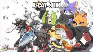 A-Cat-Suki