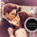Anniversary - twilight-series photo