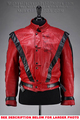 Autographed Thriller Jacket - michael-jackson photo