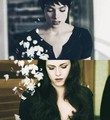 Bella&Alice - twilight-series photo