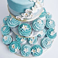 Blue Cupcakes ♥ - cynthia-selahblue-cynti19 photo