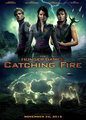 Catching Fire - catching-fire photo