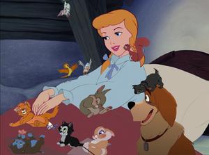 Cinderella's Menagerie