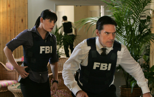 Paget Brewster wallpaper with a bulletproof vest called Criminal Minds