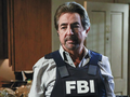David Rossi - criminal-minds wallpaper