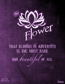 Disney Quotes ♥ - anj-and-jezzi-the-aries-twins photo