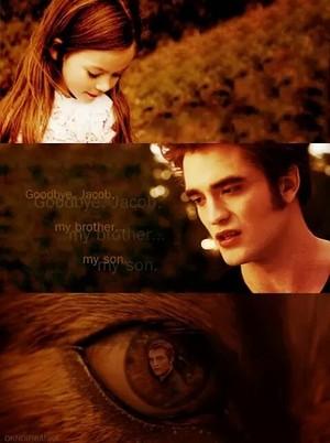 Edward, Bella and Jake