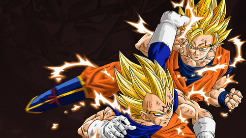 Dragon Ball Z fond d'écran entitled Goku & Vegeta fond d'écran