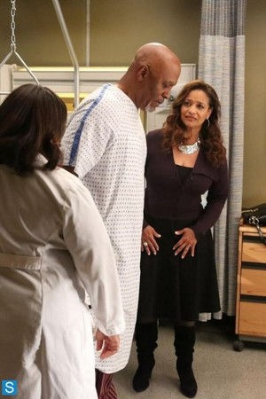 Grey's Anatomy - Episode 10.05 - I Bet It Stung - Promotional 写真