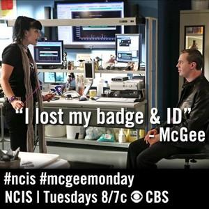 McGee & Abby// Season 11