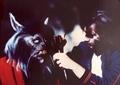 Michael Jackson - Thriller - michael-jackson photo