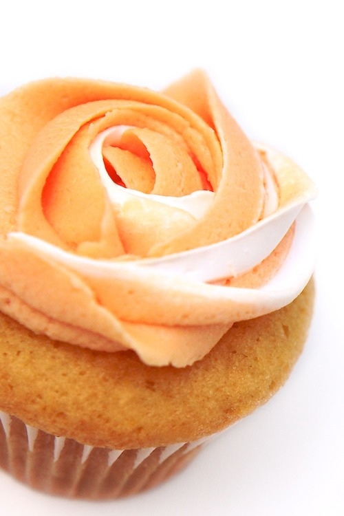 Orange Cupcakes - Random Photo (35742927) - Fanpop