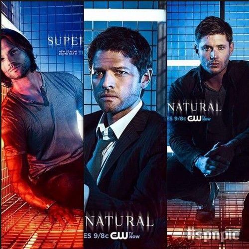 Supernatural images promo pics season9 hd wallpaper and background supernatural wallpaper with a business suit entitled promo pics season9 voltagebd Gallery