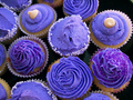 Purple Cupcakes ♥ - cynthia-selahblue-cynti19 photo