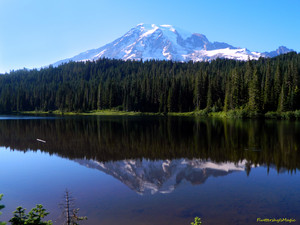 Reflection Lakes at Mount Rainier National Park