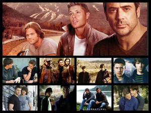 SPN collage