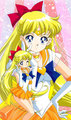 Sailor Venus - sailor-moon photo